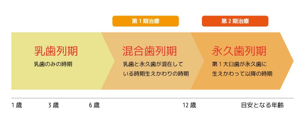 第Ⅰ期と第Ⅱ期の2段階で矯正治療